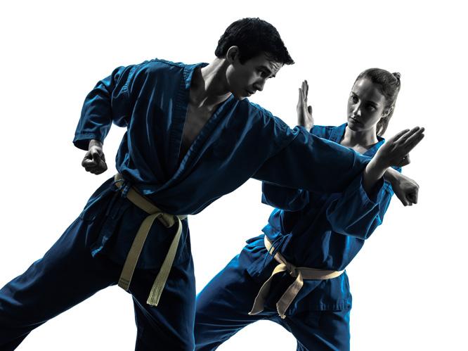 Kenpo-Karate
